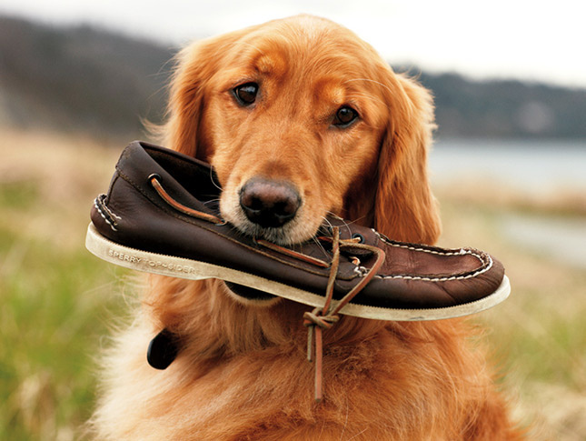 origen zapatos nauticos
